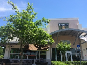 Large chain restaurants such as Panera Bread are taking over local  eateries. Photo by: Courtney Kamm April 2015